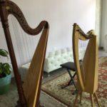 Harp at Magnolia